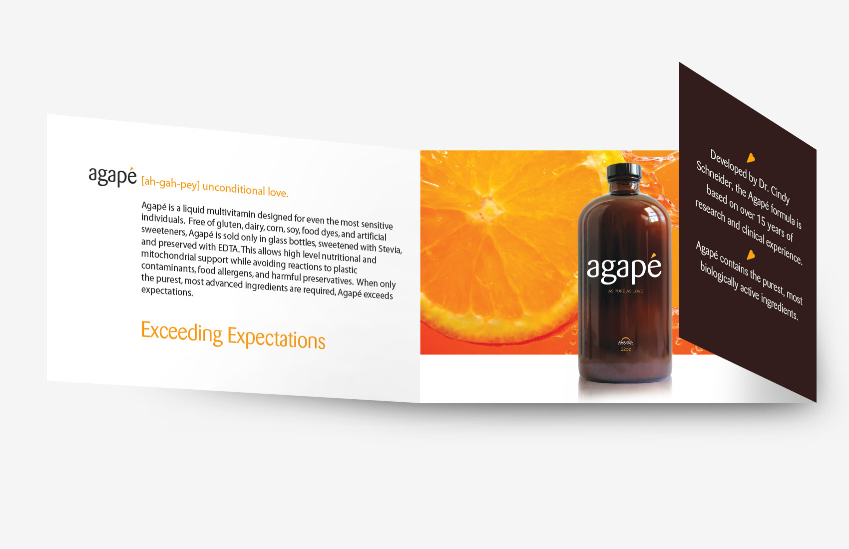 agape-gatefold-mock-up