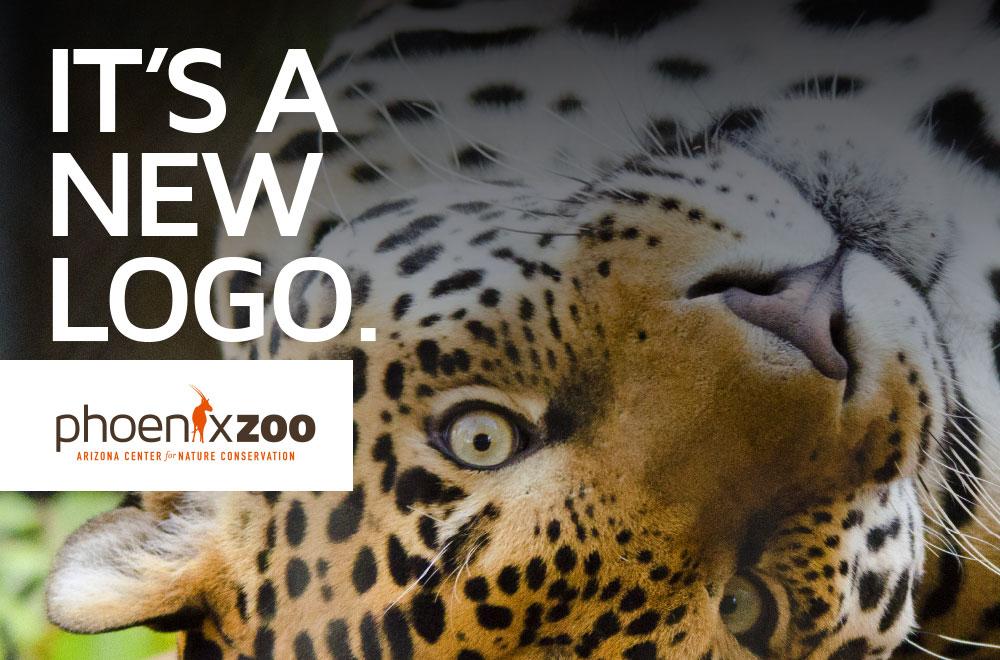 Phoenix Zoo Rebrand
